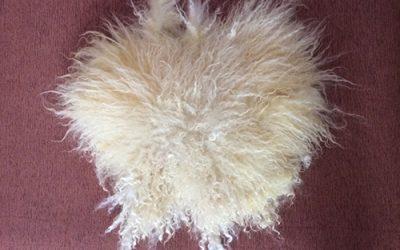 Walliser Schafwolle